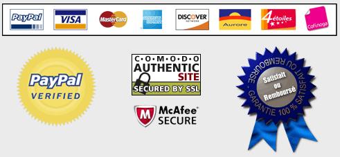 PayPal, Carte De Crédit Ou Virement Bancaire